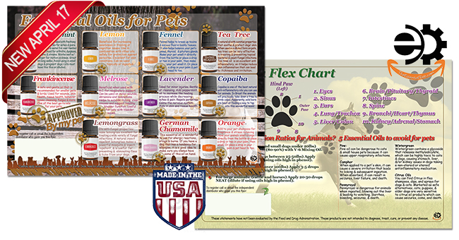 Essential Oils for pets, dogs, cats, horses, flyer and brochure