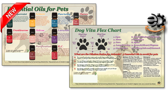 vita-flex-for-dogs-essential-oils-pets