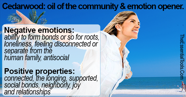 How to use cedarwood essential oils with emotions