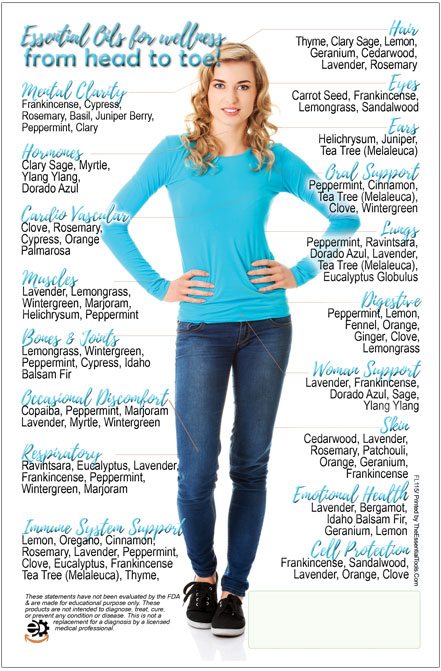 Image of Head To Toe Essential Oils Flyer front side