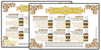 FL026-essential-oils-of-the-bible-flyer-handout-brochure-200