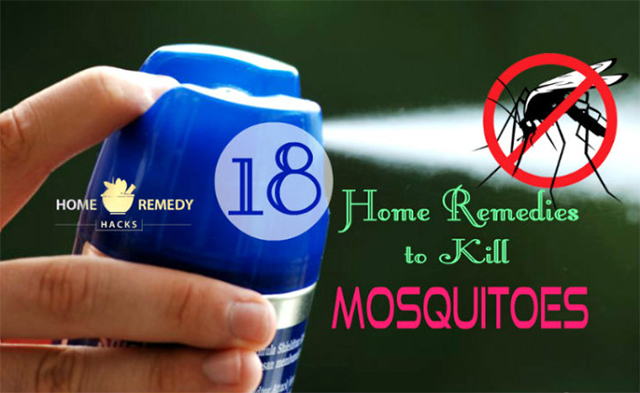 How to kill mosquitoes with essential oils