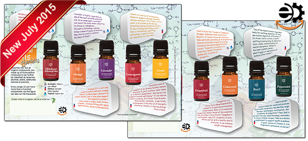 Essential Oils Chemistry. Click on the picture to see the flyer
