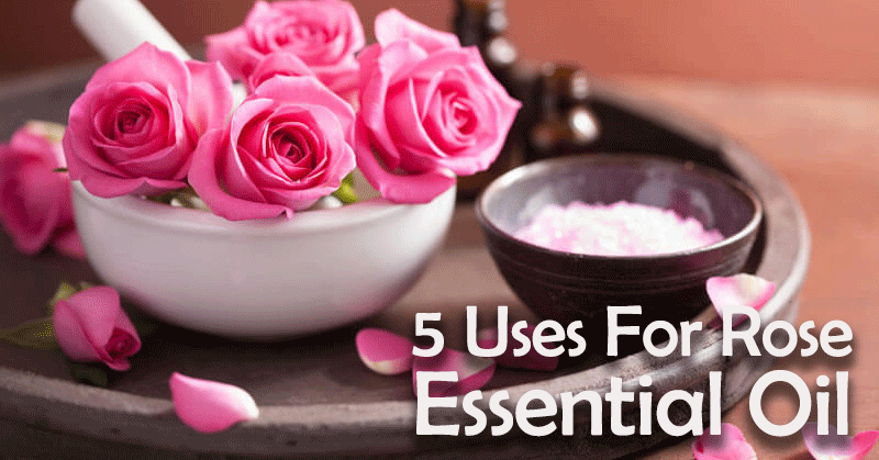 5 uses for rose essential oil