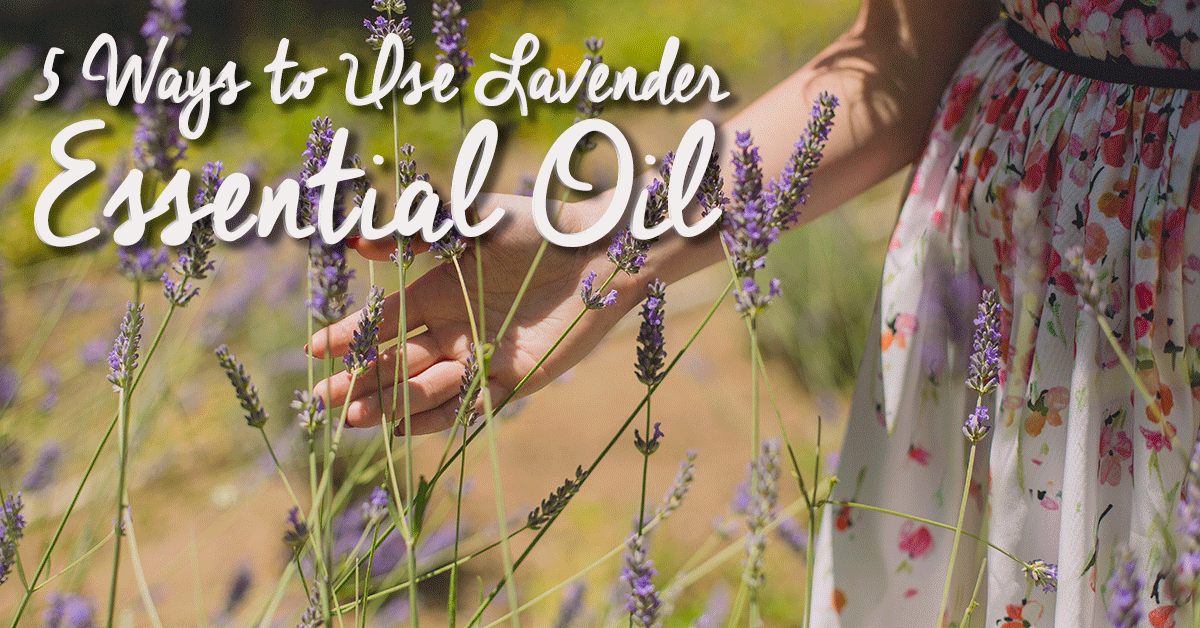 5 ways to use lavender essential oils