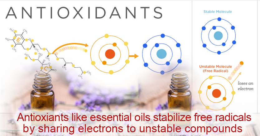 how-antioxydants-like-essential-oils-help-your-cells