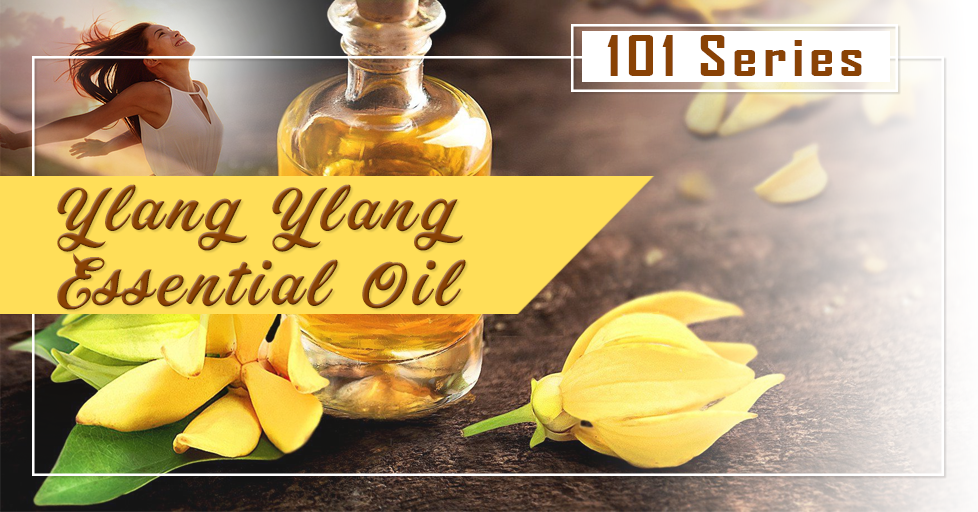 ylang-ylang-essential-oils-101-series