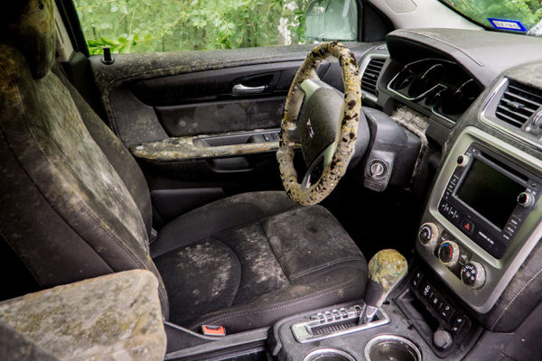 Mold growing inside a flooded car